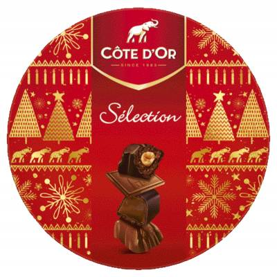 Cote dOr Selection Box