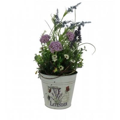 Highland Lavender