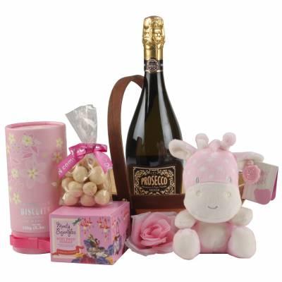Beautiful Baby Girl Hamper - Baby Girl Gifts