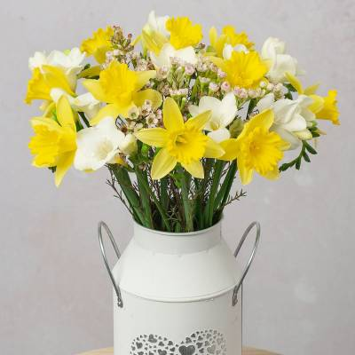 Daffodils & Freesias