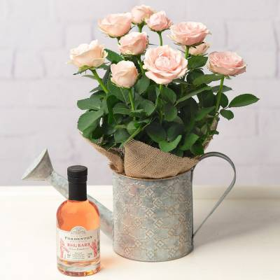 Rose and Gin Gift Set