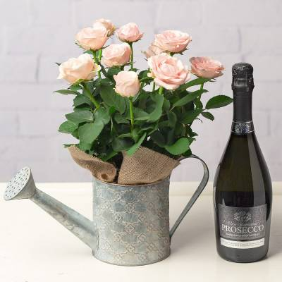 Rose and Prosecco Gift Set