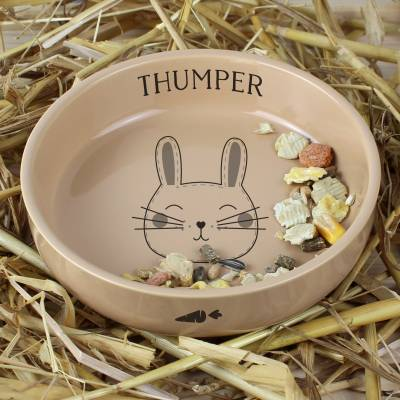 Personalised CuteRabbit Small Ceramic Brown Pet Bowl