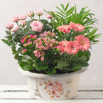 Love You Mum Planter