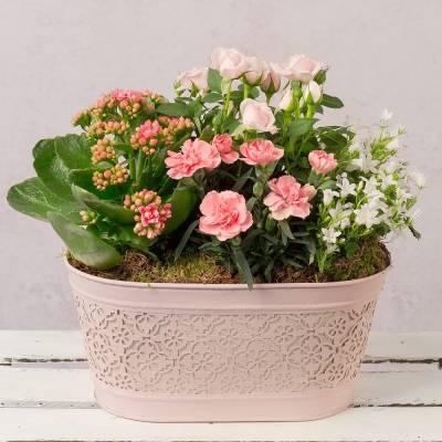 Pretty Pink Planter