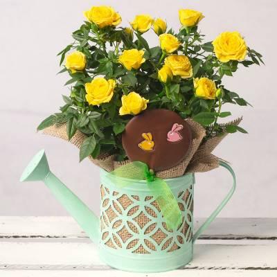 Easter Rose Gift