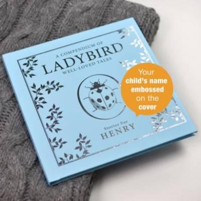 Personalised Blue Ladybird Compendium