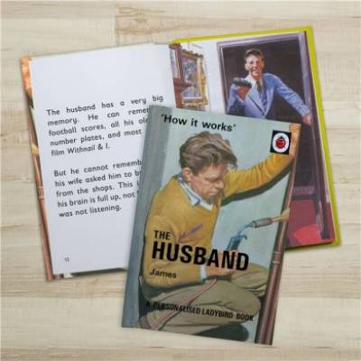 Personalised The Husband Ladybird Book