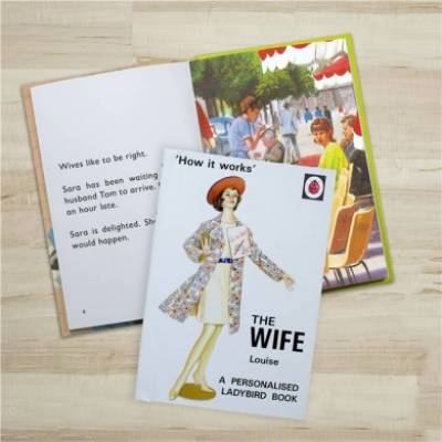 Personalised The Wife Ladybird Book - Anniversary Gifts