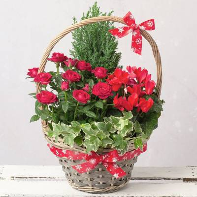 Winter Flower Basket