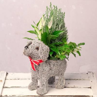 Christmas Dog Planter