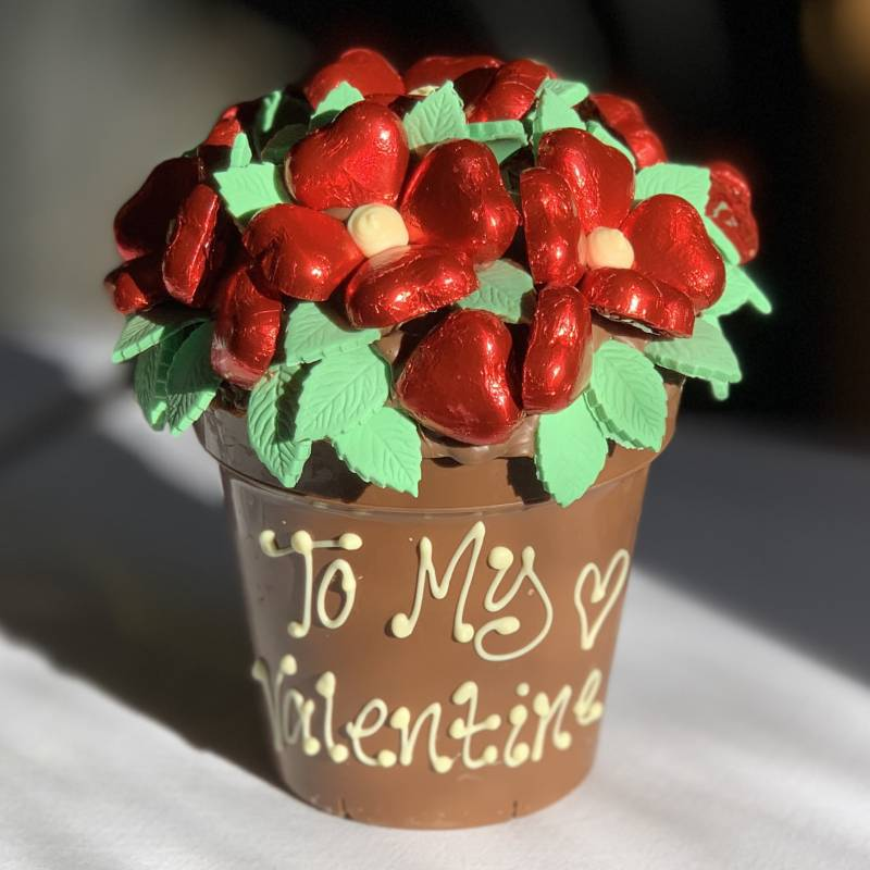 Red Chocolate Smash Flower Pot